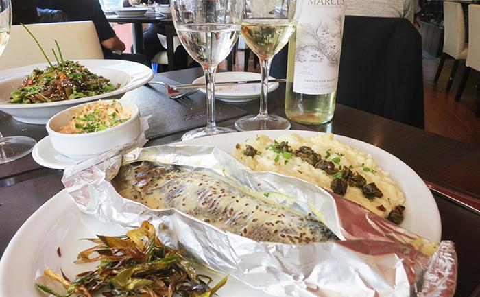 dica-viagem-ushuaia-argentina-patagonia-pinguinera-restaurante-onde-comer-4-x-4-passeio-o-que-fazer-canal-beagle-pinguim